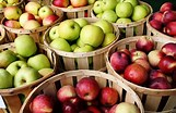 Apple Day cancelled after further COVID restrictions